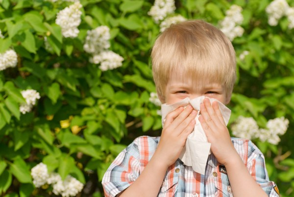 Since there is no cure for allergies, avoiding or reducing exposure to allergens is the best way to cope.