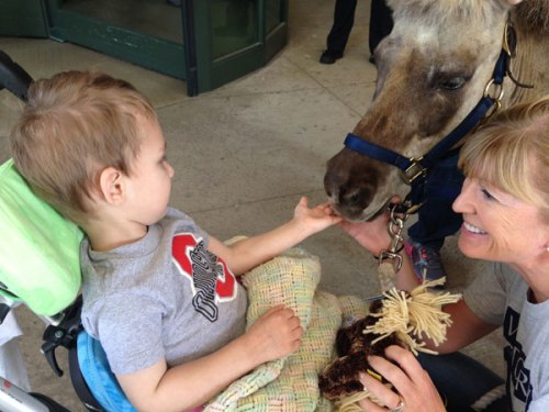 Wyatt Chason takes a break from OT with a visit from Petie the Pony