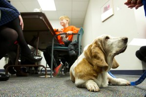 Doggie Brigade visits offer special treat for speech therapy patients