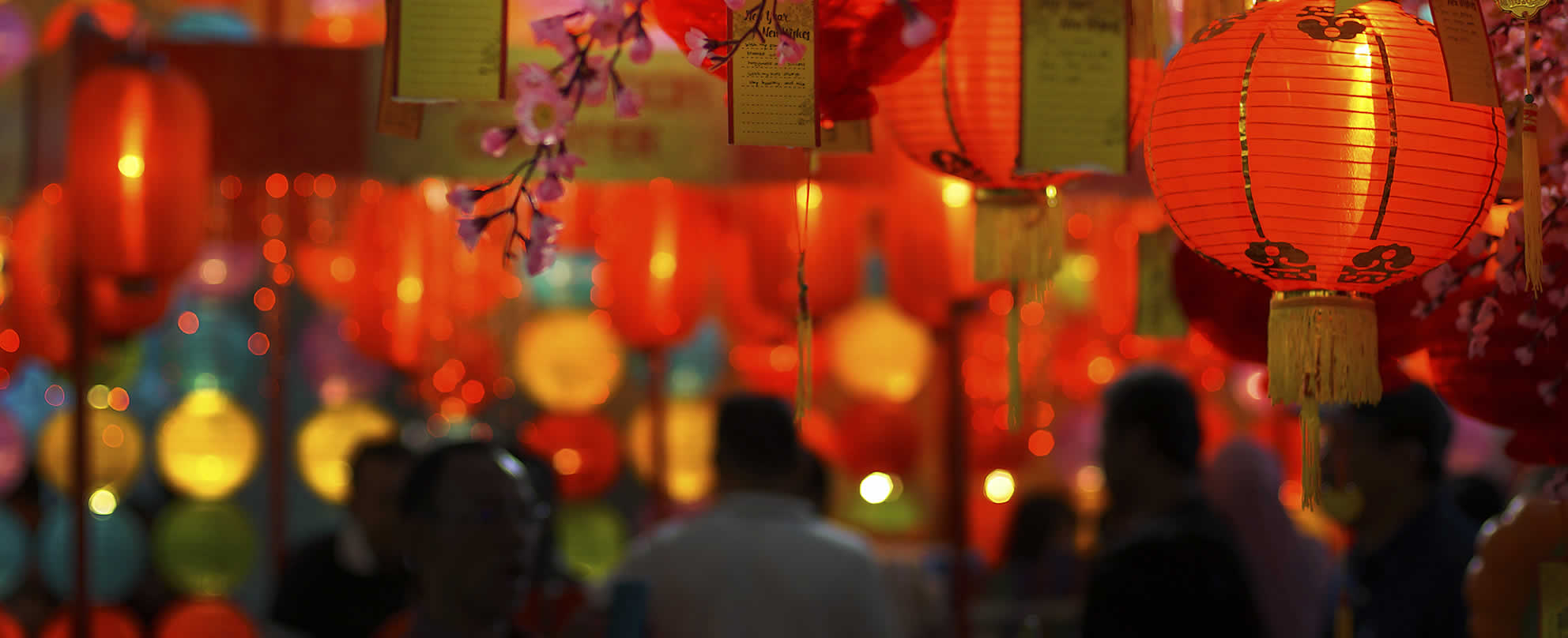 Paper Lanterns Melbourne The Allure Of Gambling For International Students Inside Gambling