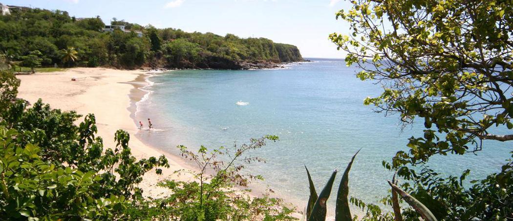 Plage-de-leroux-turquoise-voyage-guadeloupe-insolite-vue-mer-cote-sous-vent-sable-blanc-agave