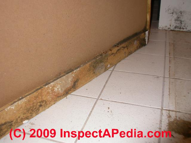 Bathroom Mold Cleanup: Clean Up Tile Grout Joints, Remove Bathroom