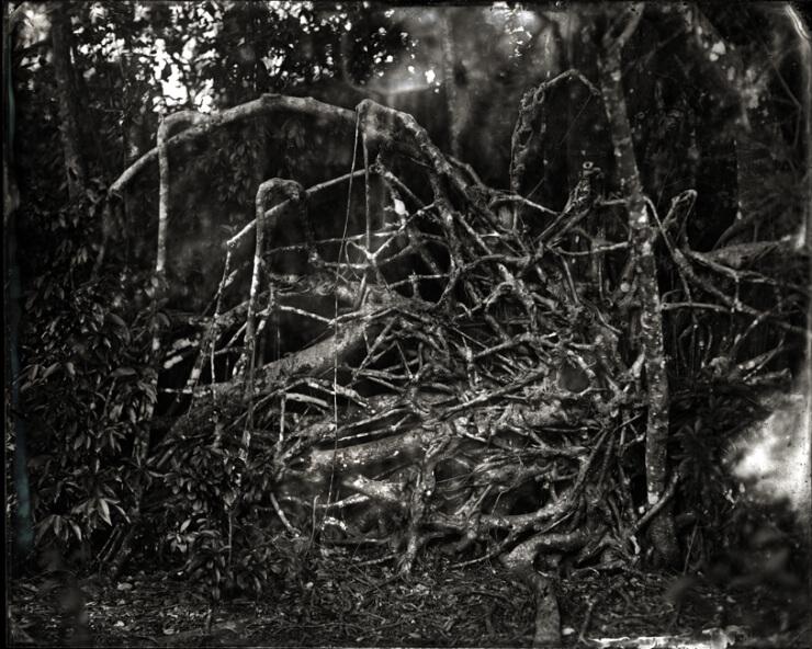 Film Photography2