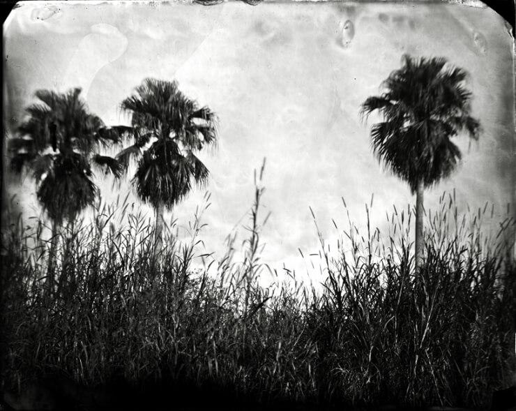 Film Photography3