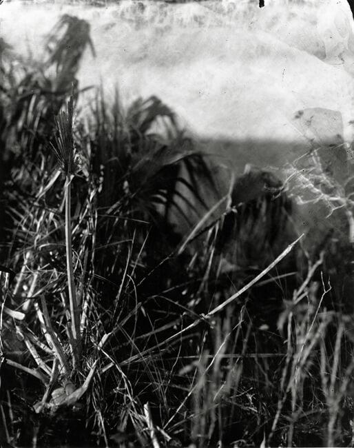 Film Photography5