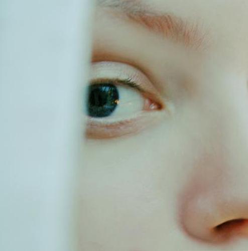 close up photography
