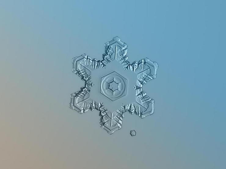 macro snow flake002