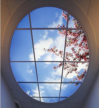 3d Blue Sky Wallpaper 27 Ceiling Wallpaper Design And Ideas Inspirationseek Com