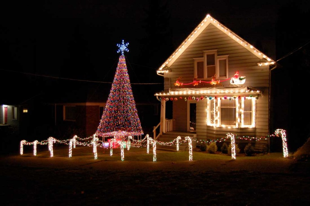 christmas decor outside houses - Rainforest Islands Ferry - christmas decorations for outside