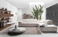 Carpet For Living Room - InspirationSeek.com
