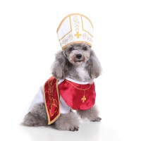 Christmas Outfits Ideas for Dogs - InspirationSeek.com