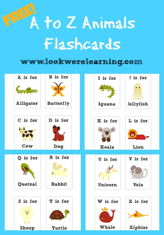 Spanish Alphabet Chart Spanish Chart - Manuscript Letters Aa -Zz - spanish alphabet chart