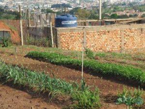 Horta Comunitária está entre os finalistas do Caixa Melhores Práticas