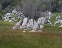 Exposed granite outcropping at Bights Beek, low water level and green grass