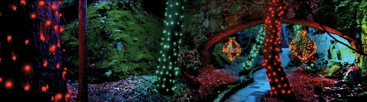 Enchanted Garden of Lights at Lookout Mountain