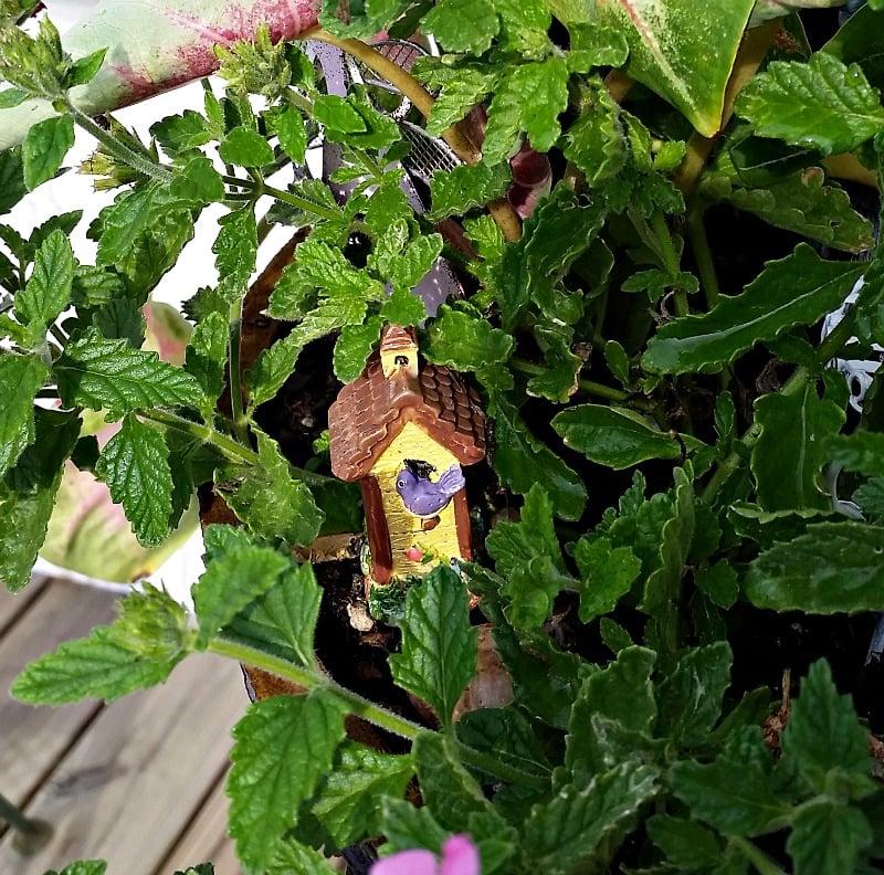 My Fairy Garden Birdhouse is actually a cheese fork!