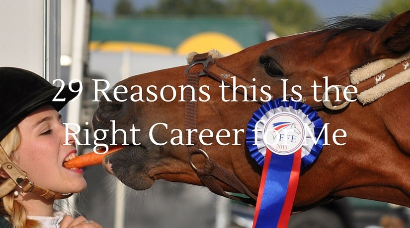 29 Reasons this Is the Right Career for Me