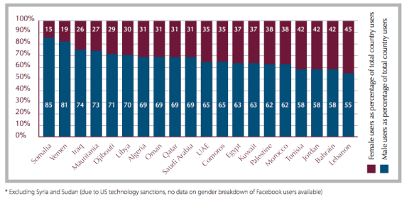 Gender Breakdown of Facebook Users in Arab Countries (Dec. 2010)