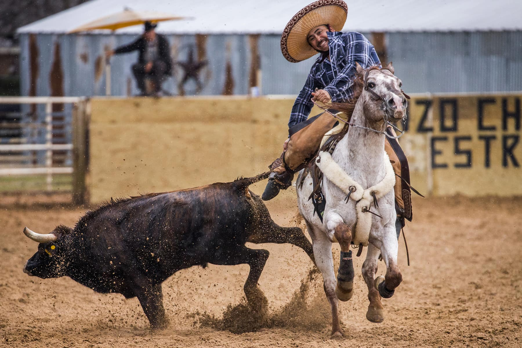 Toros Silla 2016 Mexican Style Rodeos In Unincorporated Dallas Can Be A Deadly Ride