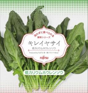 lowpotassium_plantfactory_spinach-620x651