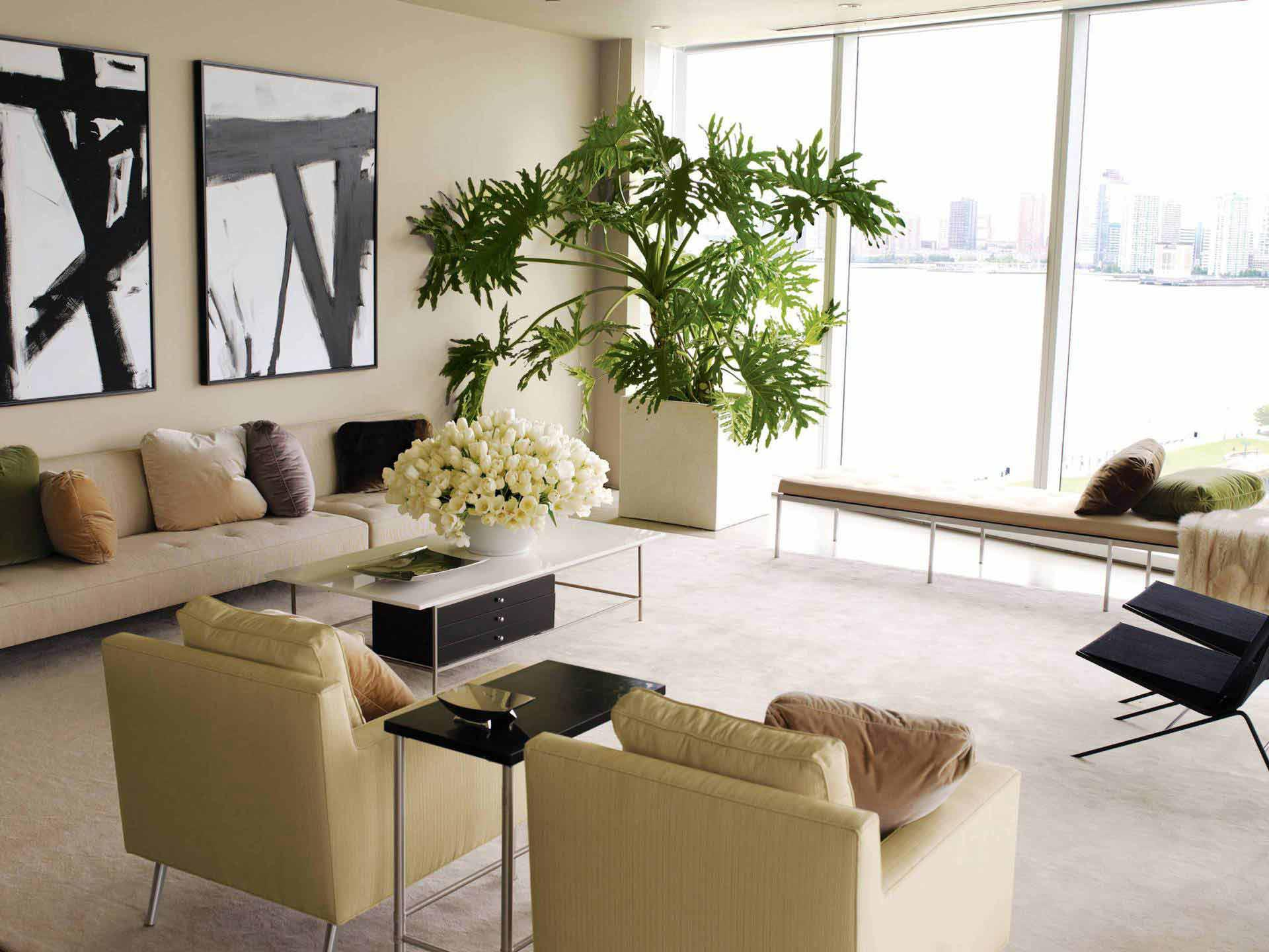 Plants For Living Room Decorating Our Homes With Plants Interior Design Explained