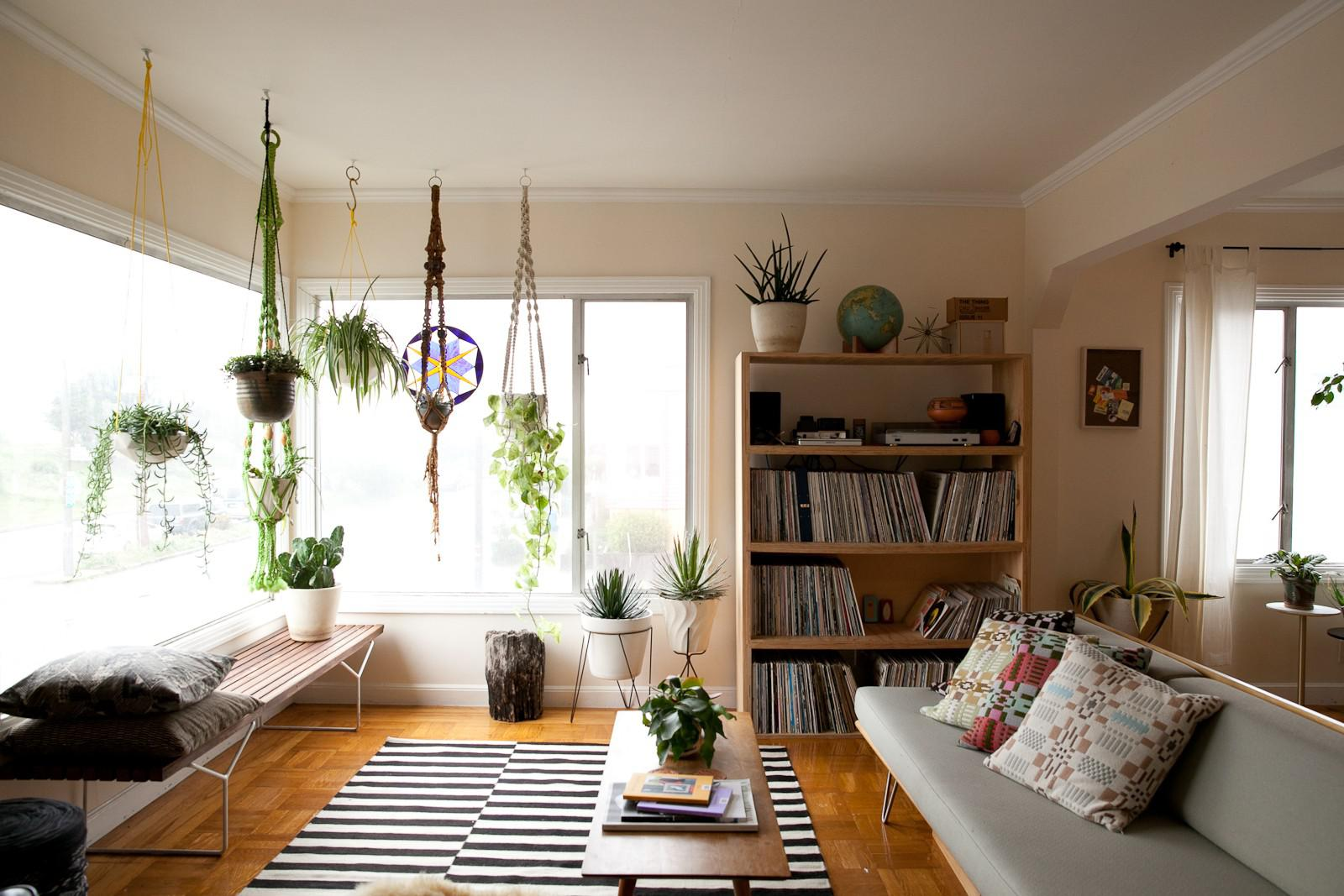 Big Plants For Living Room Decorating Our Homes With Plants Interior Design Explained