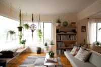 Plants In The Living Room