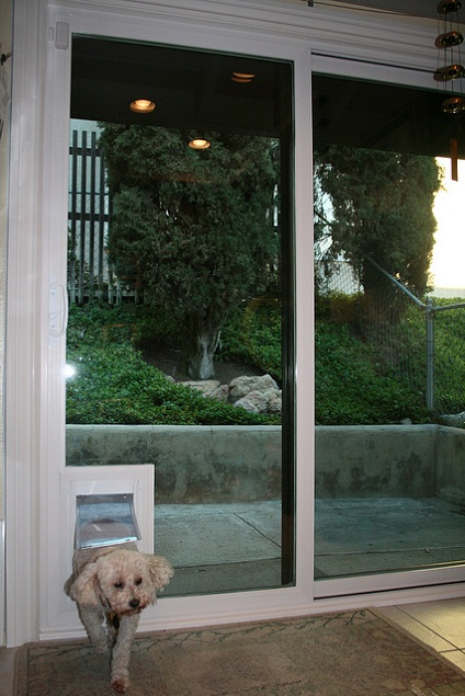 sliding glass doors with dog door built in