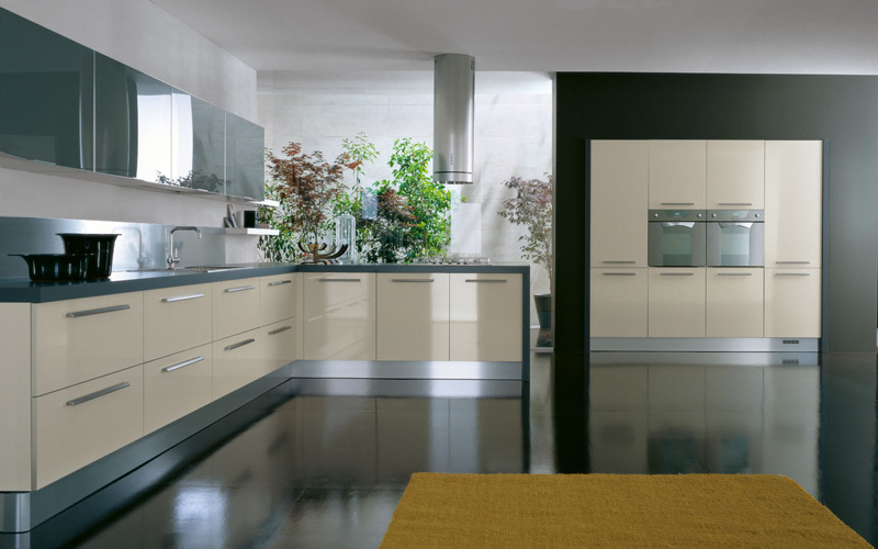 Lacquered Glass Kitchen Cabinets Interior Exterior Plan | Add Steel, Laminate, Glass In