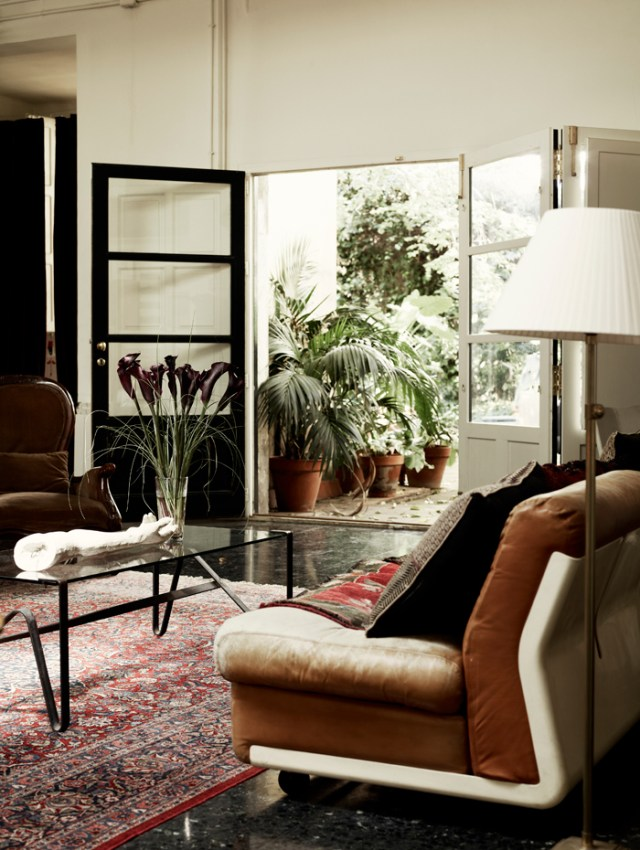La terraza abierta al salón es una maravilla con las plantas que se pueden ver en el patio.
