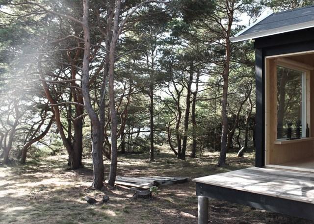 Los alrededores de la cabaña