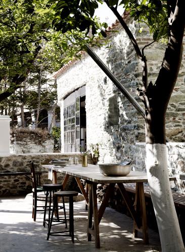 Preciosa zona exterior con mesa e higuera.