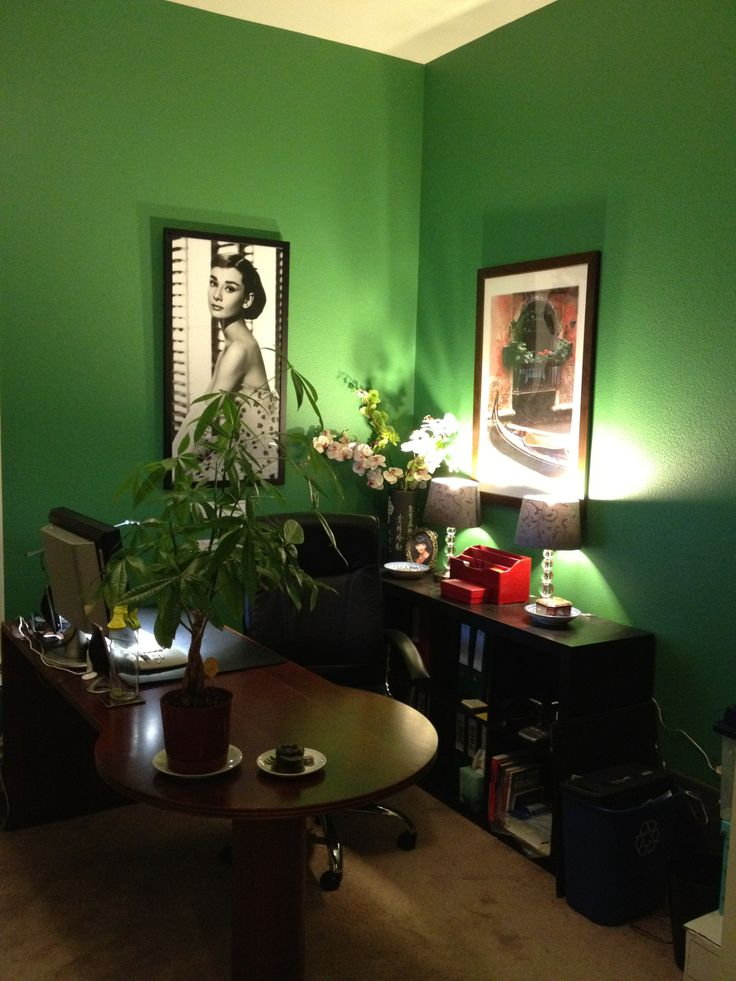 Feng Shui Benjamin Moore Bunker Hill Green - Interiors By Color (6