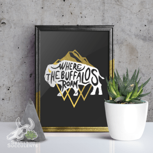 Art Print By Keena Wolff Skulls And Succulents Buffalo