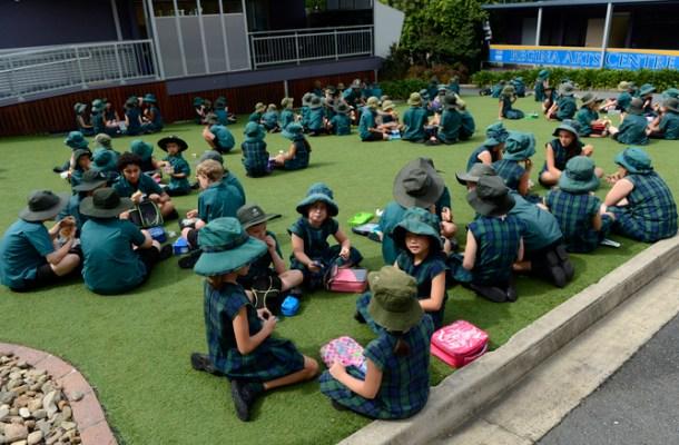 SCHOOL EDUCATION STOCK
