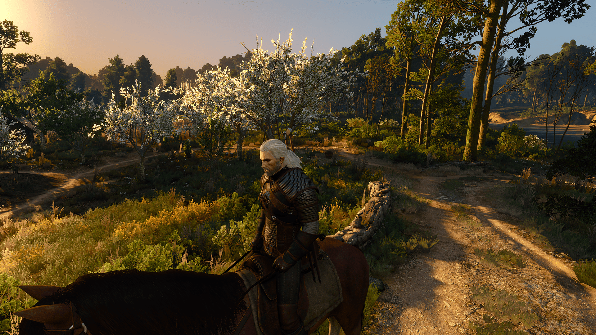 Www Hd Wallpaper Com Nature Geforce Com The Witcher 3 Wild Hunt Texture Quality
