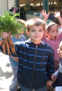 International Montessori Schools Summer School