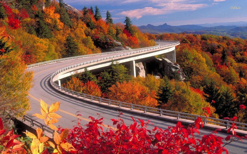 Fall Foliage Wallpaper Widescreen From Nashville To Asheville A Journey Into The Old South