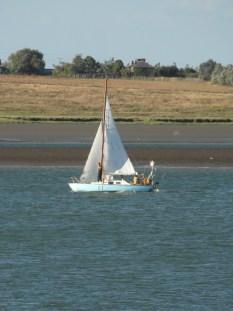 Swale match 2013 34 Folkboat