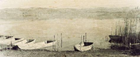 58_barche_violetta_lago_di_chiusi (1)
