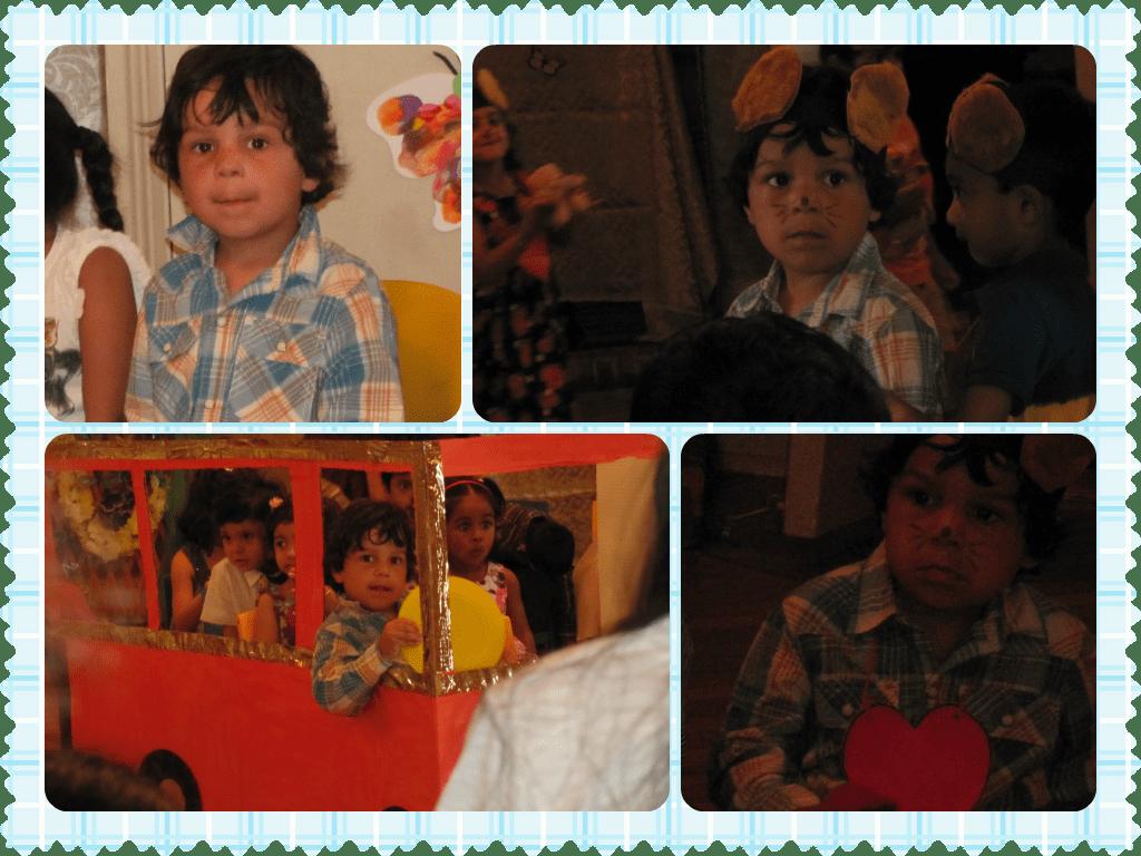 school show collage