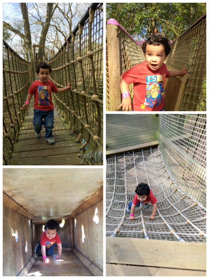 the tricky tunnels at bewilderwood