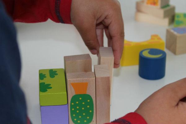 Playing with Bigjigs safari blocks