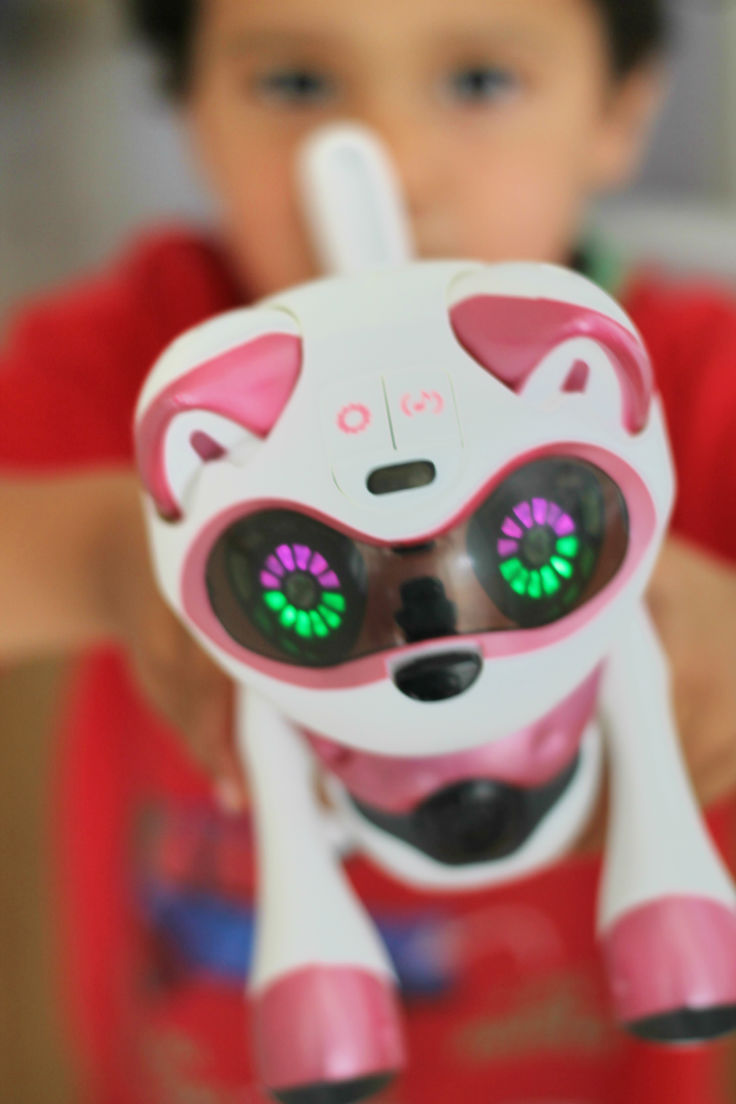 teksta kitty robotic pet