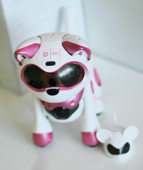 teksta robotic kitty