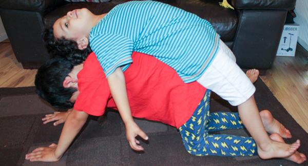 the sleeping cow jack's acrobatics