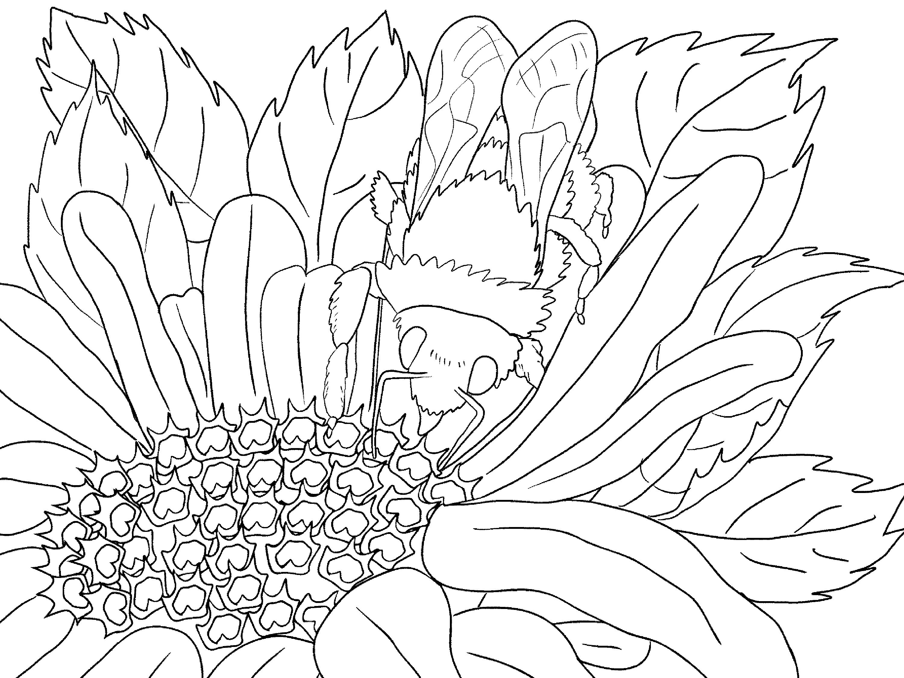 kids coloring pages scenery hill - photo#30
