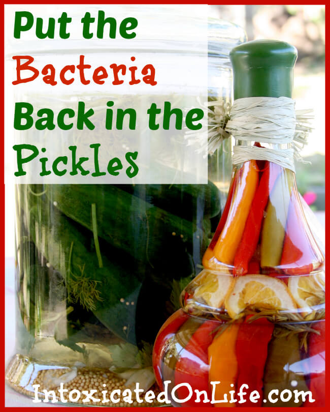 Put the Bacteria Back in the Pickles