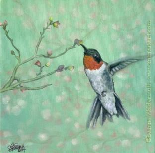 Wallpaper Desktop Quote Leanne Wildermuth Artist By Nature 187 Archive 187 Bird