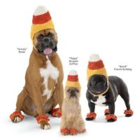 3 Simple Dog Outfits For This Halloween And Beyond